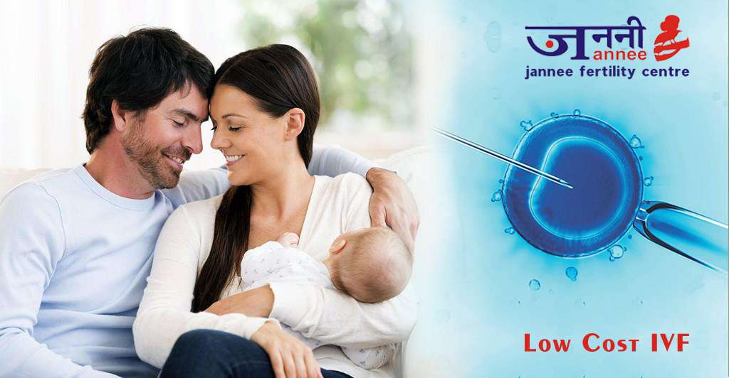Low-Cost IVF- It's Pros and Cons