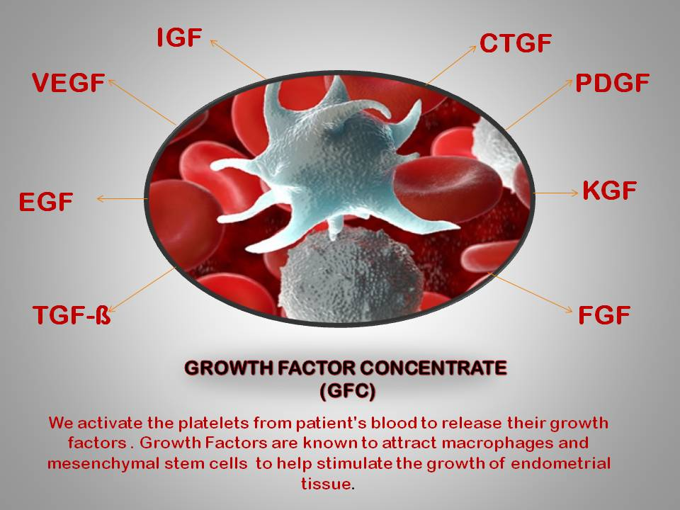 GFC Treatment for Thin Endometrium